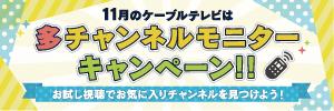 多チャンネルモニターキャンペーン!!